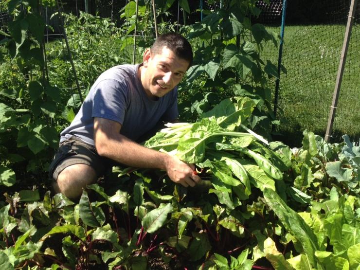 Tiny garden--big crop!