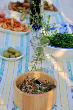 Mexican thyme as a centerpiece with appetizers, greens, and radish salada