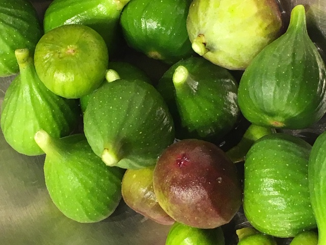 Unripe green and black figs in a bowl