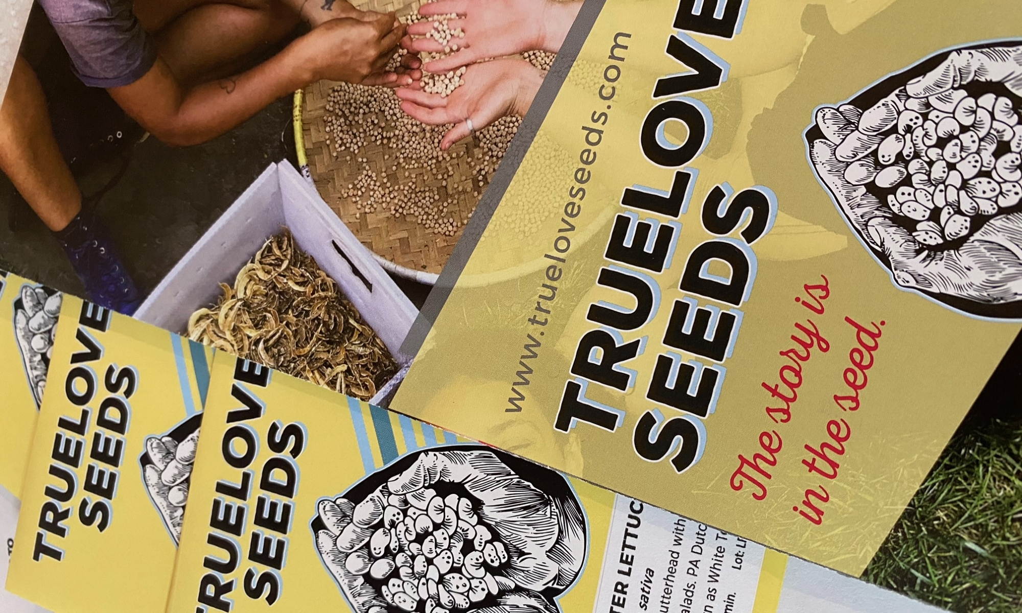 seed packets and a brochure from Truelove Seeds
